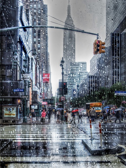 things to do on a rainy day in NYC